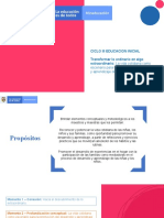 PPT STS Ciclo 3
