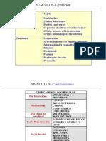 CELULAS MUSCULARES