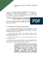 MODELO DE AGRAVO DE INSTRUMENTO CONTRA DECISÃO QUE NEGOU LIMINAR