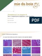MOOC_Anatomie_du_bois_chapitre23_complement2