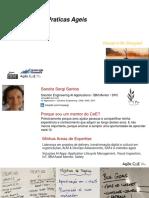 Agile Enterprise_METODOS&FRAMEWORKS_TLC