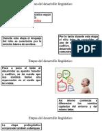 Desarrollo del lenguaje pre linguistico