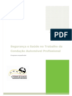 Programa Enquadrador_ConducaoAutomovelProfissional