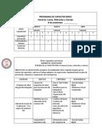 FORMATO PROGRAMA DE CAPACITACIONES