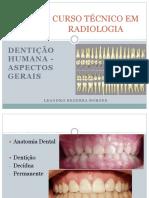 1 - Dentição Humana - Aspectos Gerais