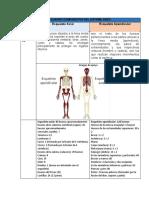 Cuadro Comparativo Del Sistema Oseo
