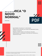 Dinamica o Novo Normal