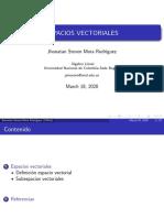 ESPACIOS VECTORIALES
