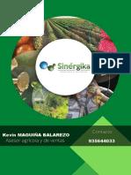 _Catalogo Sinergika (1)