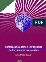 Raul_Nunez_Cabello_-_Numeros_racionales_e_introduccion_a_los_irracionales