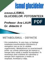 Metabolismul_Glucidelor-Anabolismul