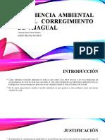 Conciencia ambiental en el corregimiento de vijagual (Exposicion)