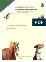 GLOSARIO- ANTONELLA