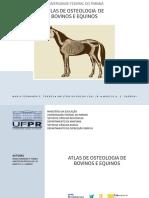 (VERSÃO DIGITAL) Atlas de Osteologia