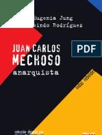 9974324173-mechoso-reducido