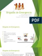 Brigadas de Emergencia_JennyBarrera