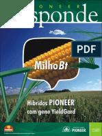 Milho Pioneer Bt - Refugio
