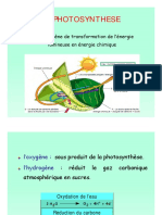 Support_Cours_Nutrition_Metabolisme-1 - Copie