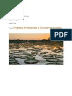 MARCO TANCREDI COSTA DA SILVA - Projetos Ambientais e Conservacionistas