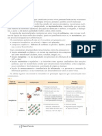 Ficha Informativa - Biomoléculas