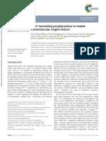 Light harvesting porphyrazines to enable intramolecular singlet fission-comprimido