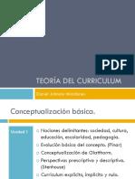 DJ 2009 Curriculum y Teoria Curricular