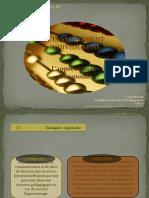 Enseignement_individualise (1)