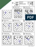 satrançta çifte saldırı ( çözümlü sorular)