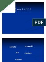 curs 1 ccp