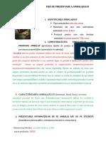 FIȘĂ DE PREZENTARE A AMBALAJULUI  3 mat celulozice