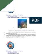 AMIGOS DO MAR - SUGESTÃO DE ATIVIDADES - 1º ANO