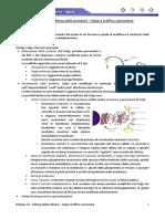 Biologia 29 - Editing delle proteine - Golgi e traffico vescicolare
