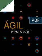 Libro Del PMI Agile Book.en.Español