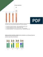 Milieu Bacteriologie
