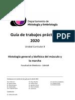 guiapractica2020BCC2 - practico4