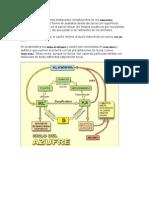 ciclo de El azufre