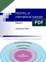 5. PESTEL International markets (04.11.10)