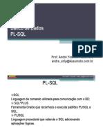 20091029 - PL-SQL