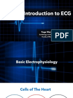 ECG Course - Introduction to ECG