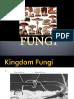 BOT 3:Fungi