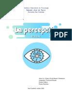 Percepción Visual, mapa mental