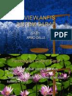 rev-anfis-sistem-saraf