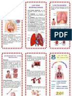 Triptico-Sistema-Respiratorio
