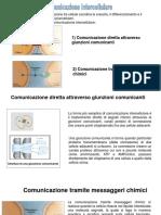 12_ Comunicazione Intercellulare-messaggeri Chimici