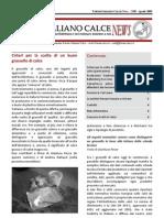 VVAA. Criteri Per La Scelta Di Un Buon Grassello Di Calce. 2009