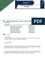 Indicaciones Para Elaboración Informe de Practica Virtual La Célula