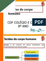 TECIDOS 8 ANO