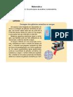 Matemática - Capítulo 22 Os princípios da análise combinatória
