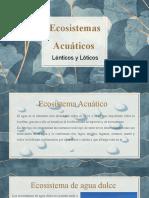 Ecosistemas lénticos y lóticos