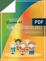RESUMEN PLAN DE ESTUDIOS 2011